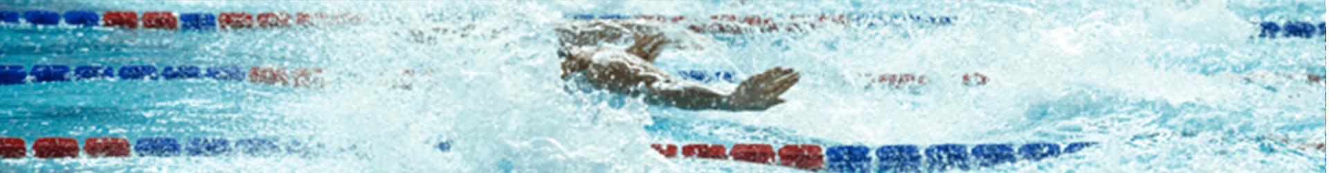 Nuoto i delfini for Piscina i delfini